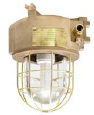 Explosion Proof Light Fittings With Protection Guard